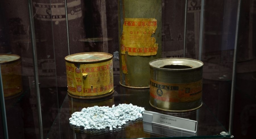 Wystawa Więźniowie Majdanka
