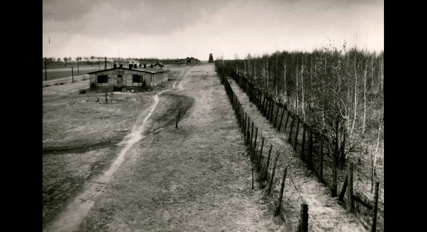 Zoom image: Afforested prisoners' field no. 1, mid-50's