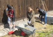 Pokaż powiększenie powyżej: Uczniowie wykonują prace porządkowe na terenie byłego obozu