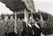 Pokaż powiększenie powyżej: Dni Majdanka, 1972
