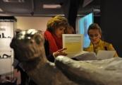 Pokaż powiększenie powyżej: Rosnąca frekwencja w Państwowym Muzeum na Majdanku