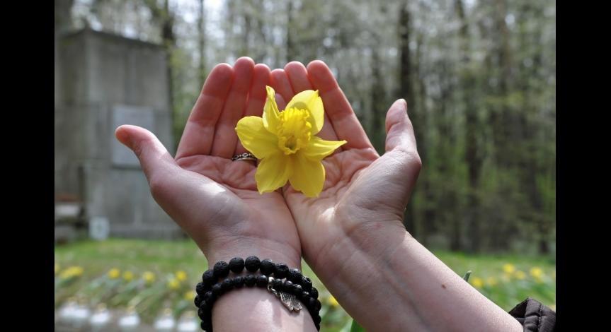 Powiększ obraz: Dzień Pamięci Ofiar Holocaustu
