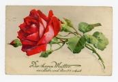 Pokaż powiększenie powyżej: Fot. 17. Karta wysłana z okazji Dnia Matki do Emmy Kral przez Waltera Krala, 12 maja 1934 r.