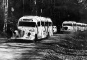 Pokaż powiększenie powyżej: Ewakuacja odcinek 8. Białe autobusy hr. Bernadottego