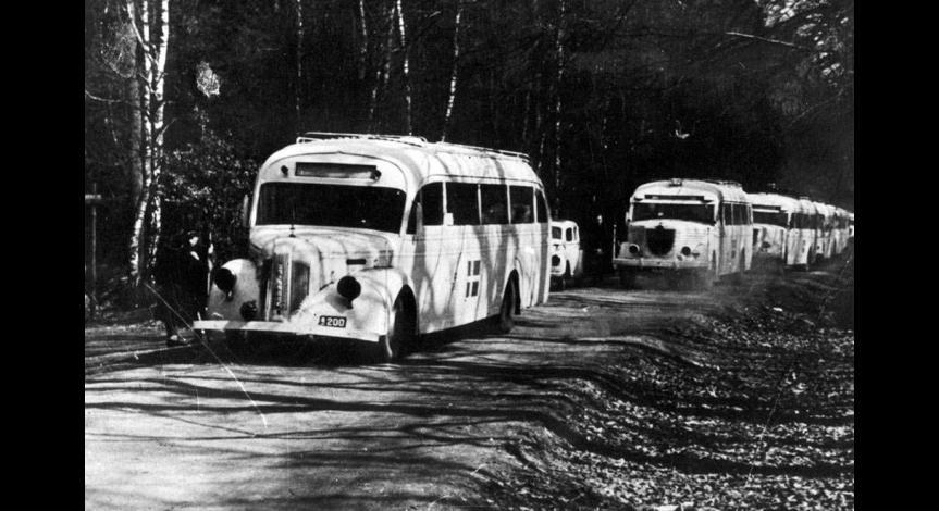 Ewakuacja odcinek 8. Białe autobusy hr. Bernadottego